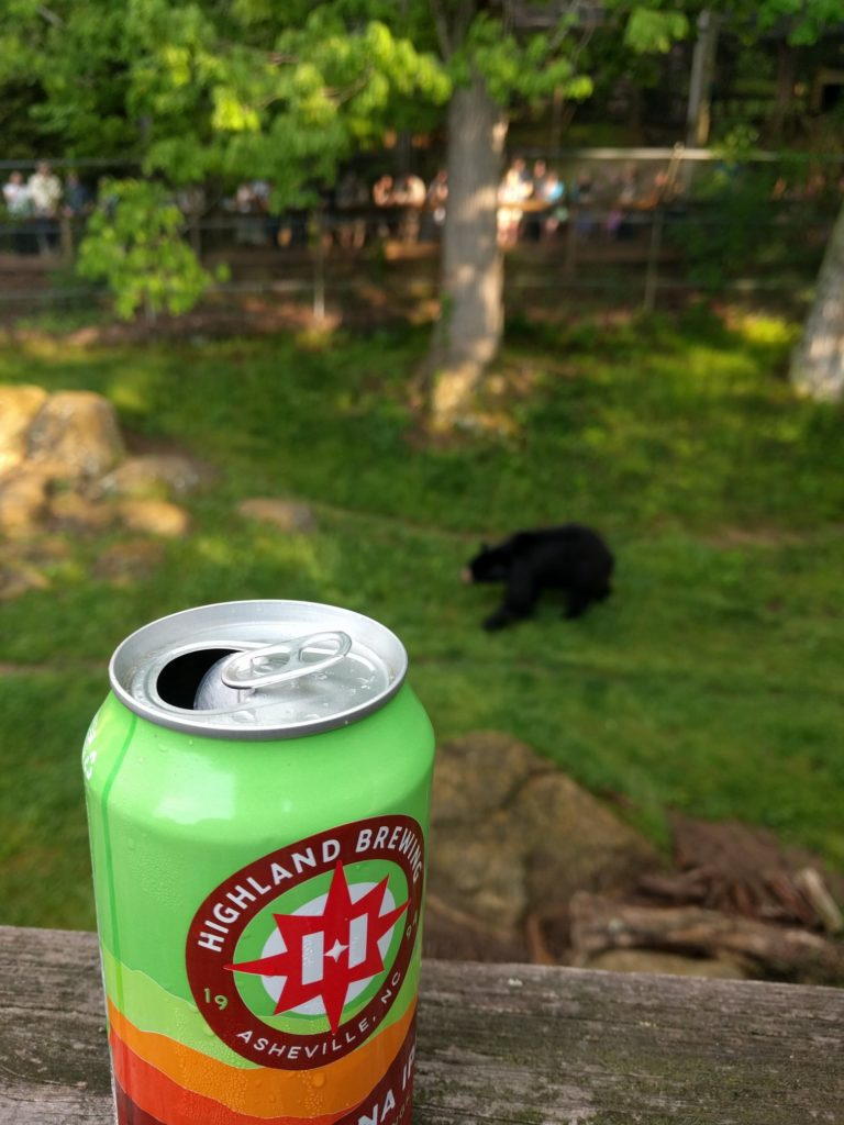 Bears and brews at the WNC Nature Center in the NC Blue Ridge