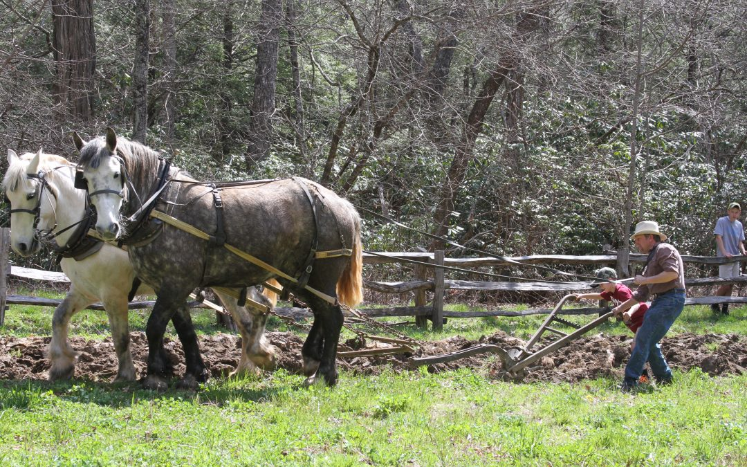 Old Time Plowing & Folkways