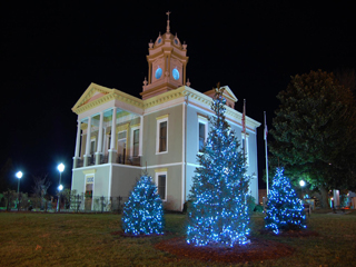Winter Carnival and Memorial Tree Lighting