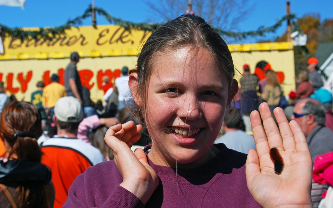 Girl Holding Woolly Worm at Annual Banner Elk Festival
