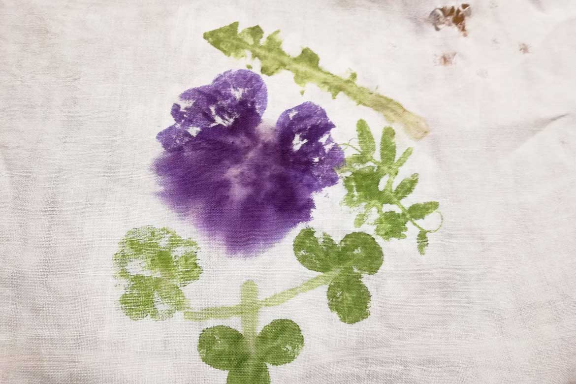 Winter Workshop 3 (online): Art from your Yard- Natural Pigment Tempera Paint and Smash Flower Art